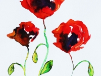 poppies-wc-4-small